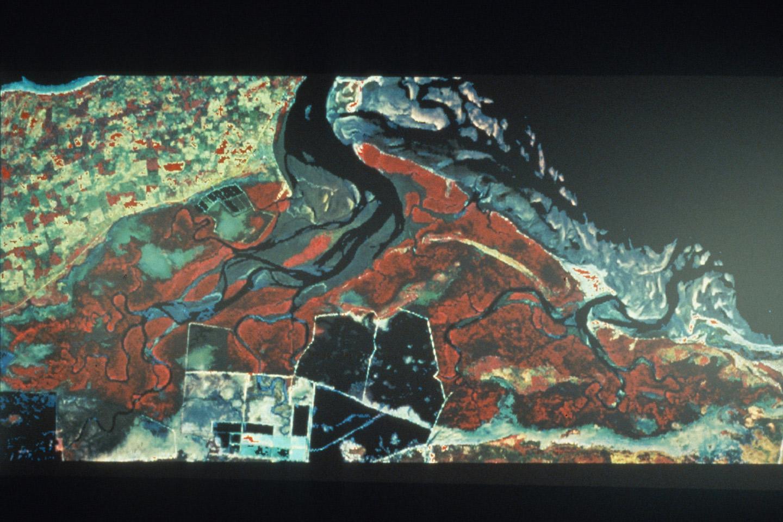 © CNRS Photothèque / François BLASCO